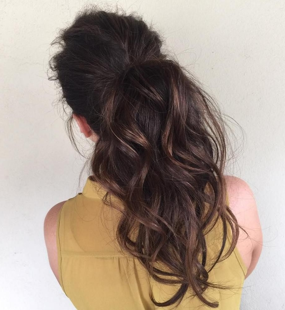 Featured Photo of Ponytail Hairstyles For Brunettes