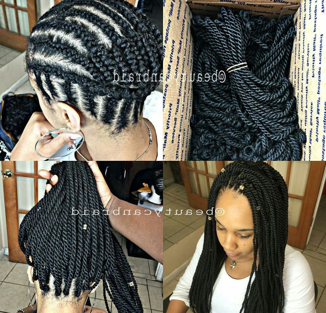 Crochet Intended For Best And Newest Cornrows And Senegalese Twists Ponytail Hairstyles (View 8 of 20)