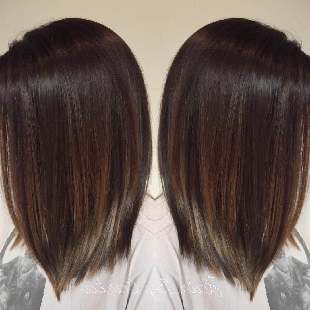 Dark Brown Hair With Subtle Balayage (Gallery 7 of 20)