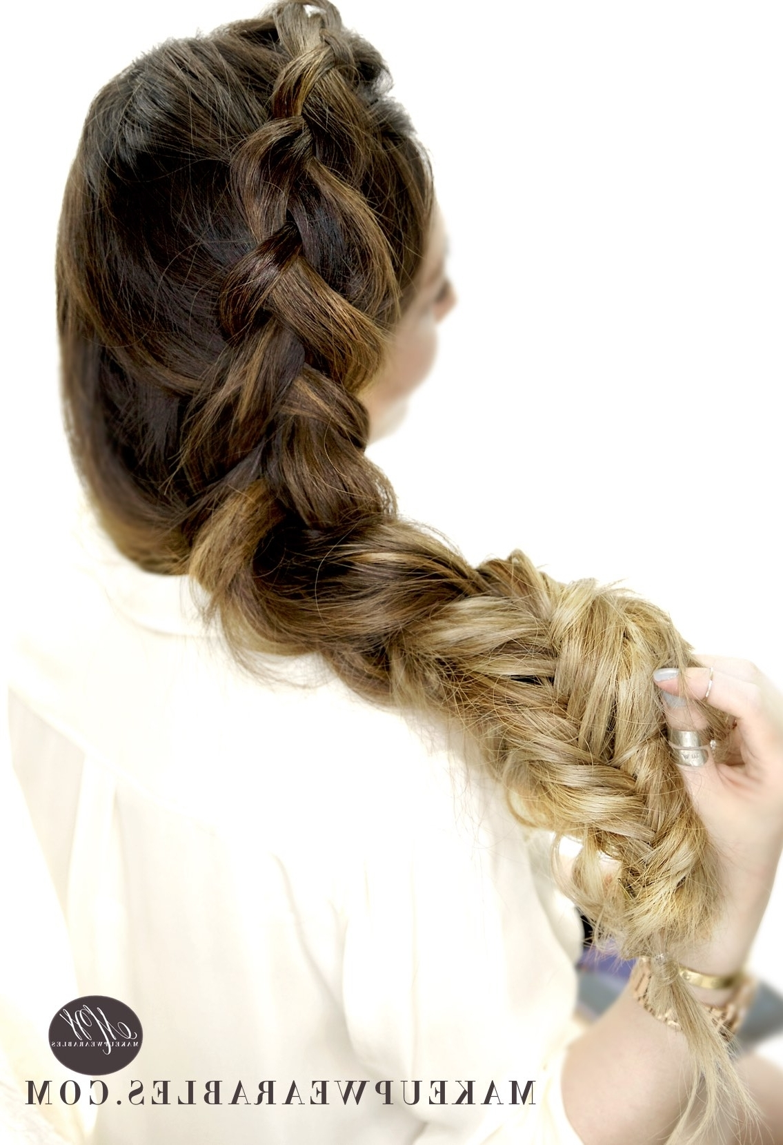 Dutch Into Fishtail Braids (View 3 of 20)