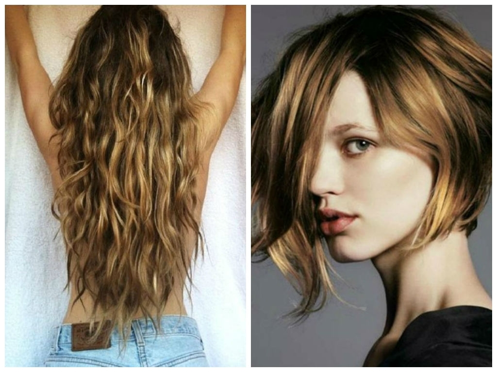 Favorite Beachy Waves Hairstyles With Blonde Highlights Throughout Long Beach Curly Hair With Highlights How To Go From Blonde Back To (View 11 of 20)