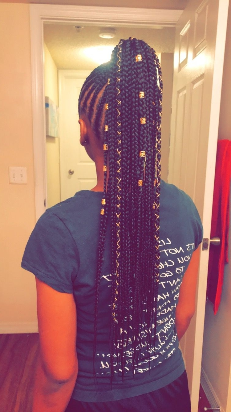 Favorite Long Braided Ponytail Hairstyles With Bouffant Inside Small Feed In Braids Into A Ponytail That I Did On My Little Sister (View 20 of 20)