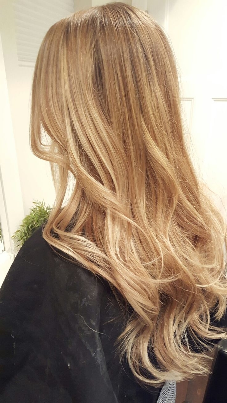 Frizzy Hair Stylist Because Of Honey Blonde Hair Colors Inside Most Current Honey Blonde Hairstyles (View 11 of 20)