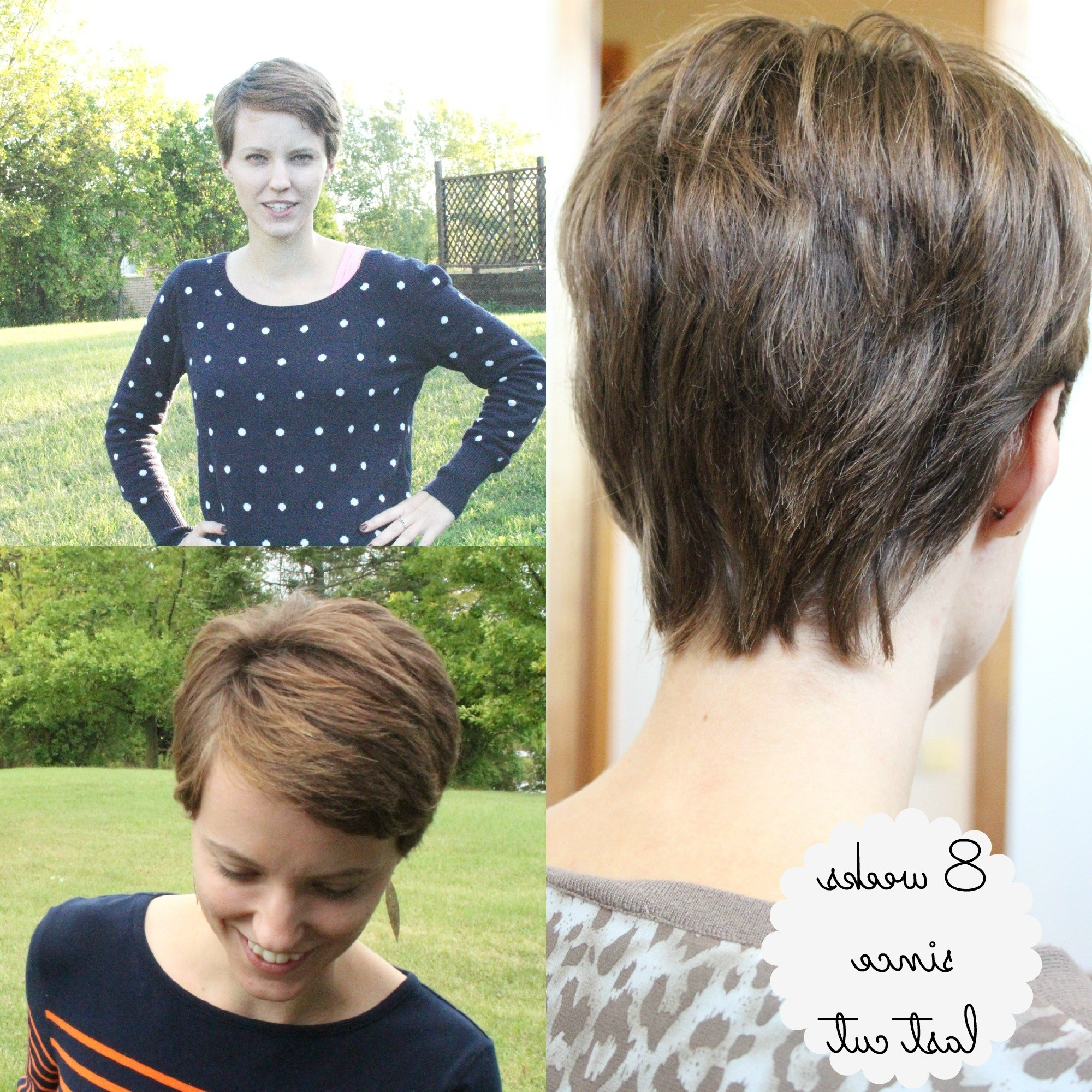 Growing Out A Pixie Cut (Part 1) (Gallery 16 of 20)