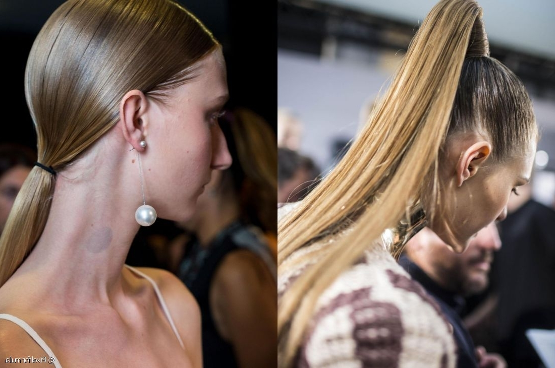High Or Low: The Ponytail Duel! With Recent High And Glossy Brown Blonde Pony Hairstyles (View 6 of 20)