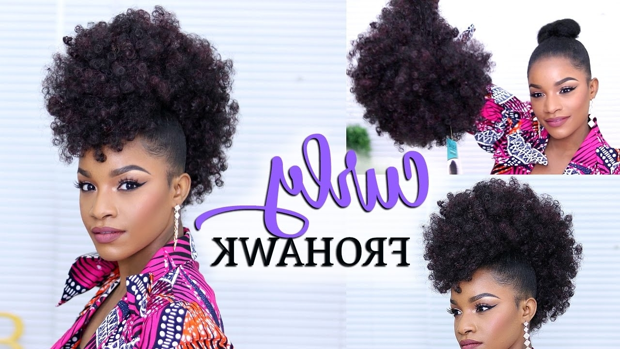 How To Do A Curly Frohawk Regarding Well Known Two Tone High Ponytail Hairstyles With A Fauxhawk (View 2 of 20)