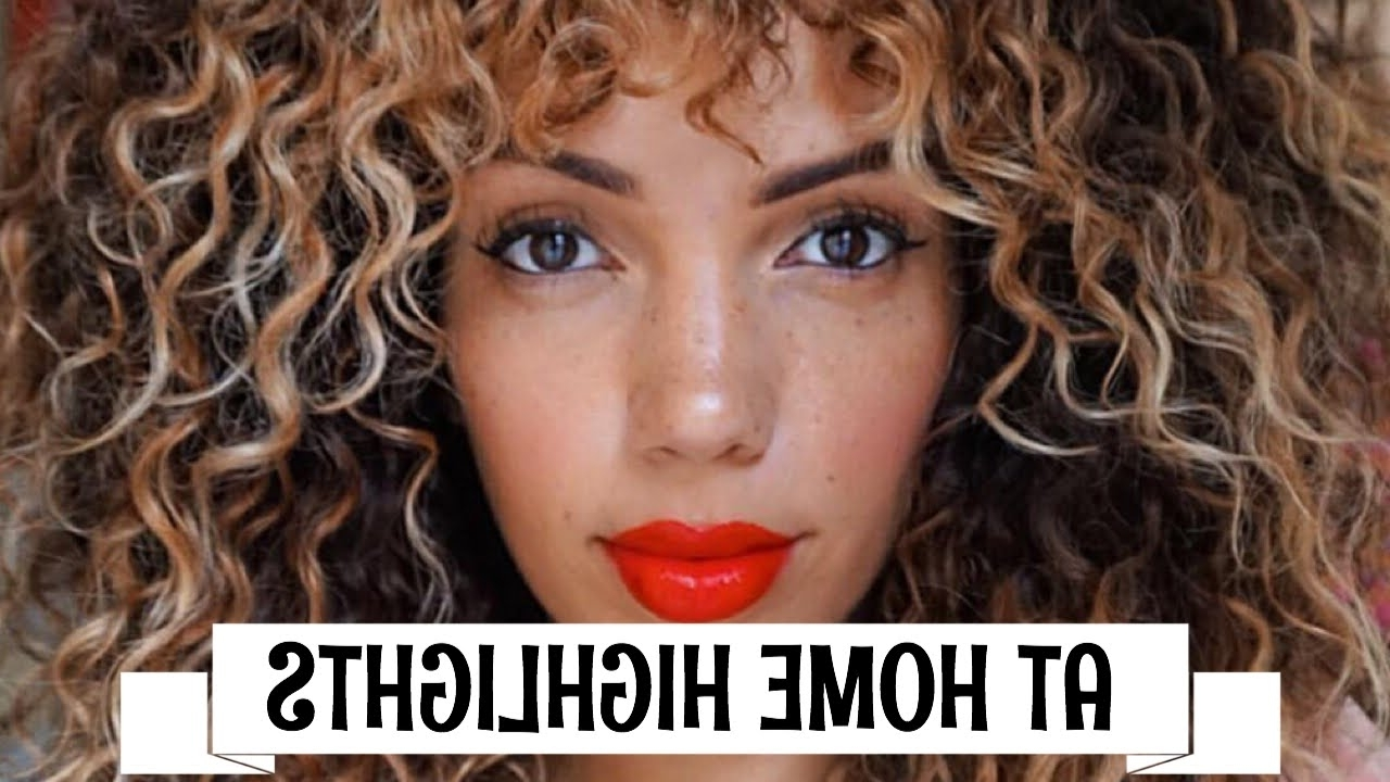How To Highlight/ombre Curly Hair At Home Diy ( Revlon Frost & Glow Regarding Famous Brown To Blonde Ombre Curls Hairstyles (View 11 of 20)