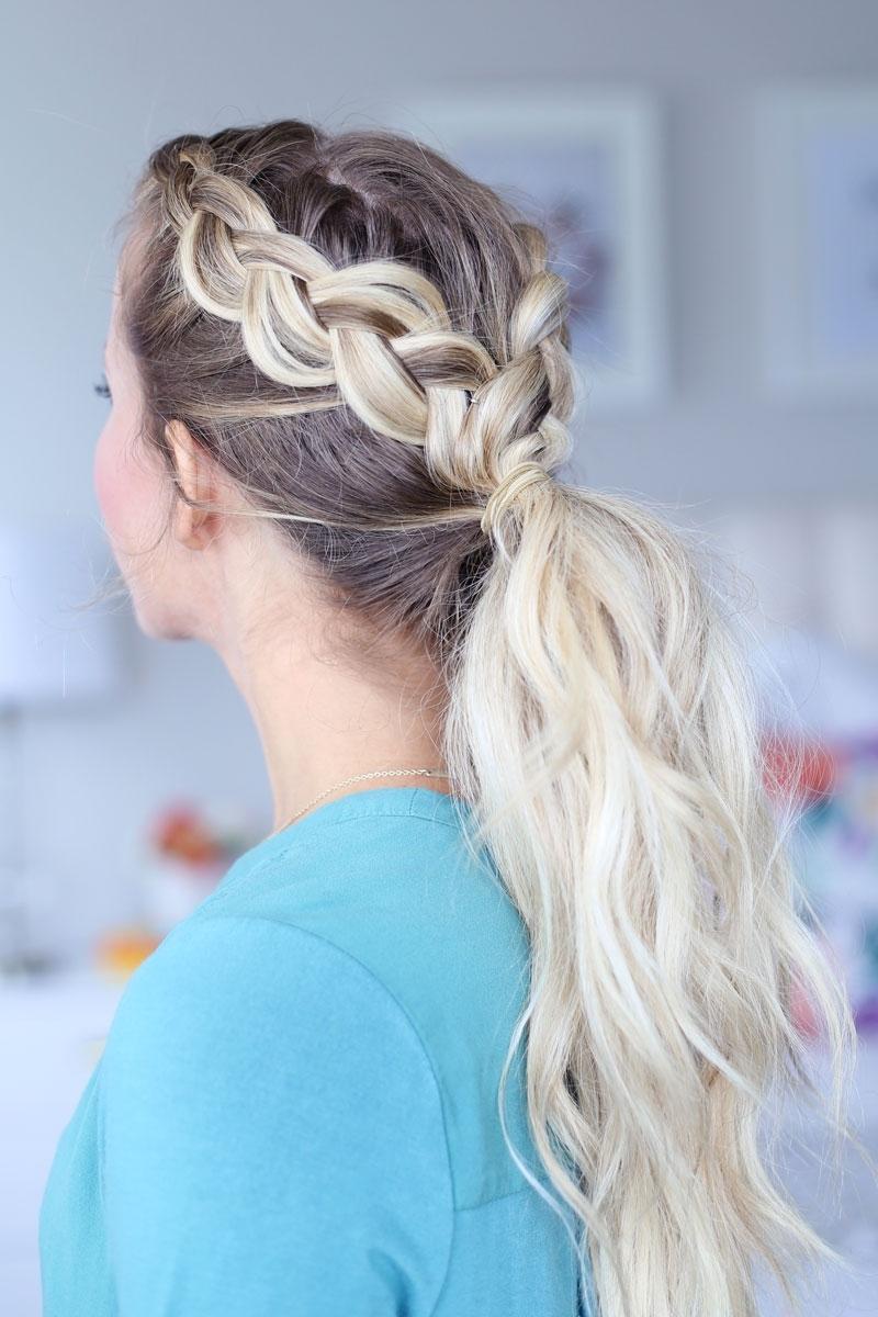 Latest Dutch Braid Pony Hairstyles Pertaining To Day To Night Dutch Braid Hairstyles + 2 Ways To Wear Them! (View 4 of 20)