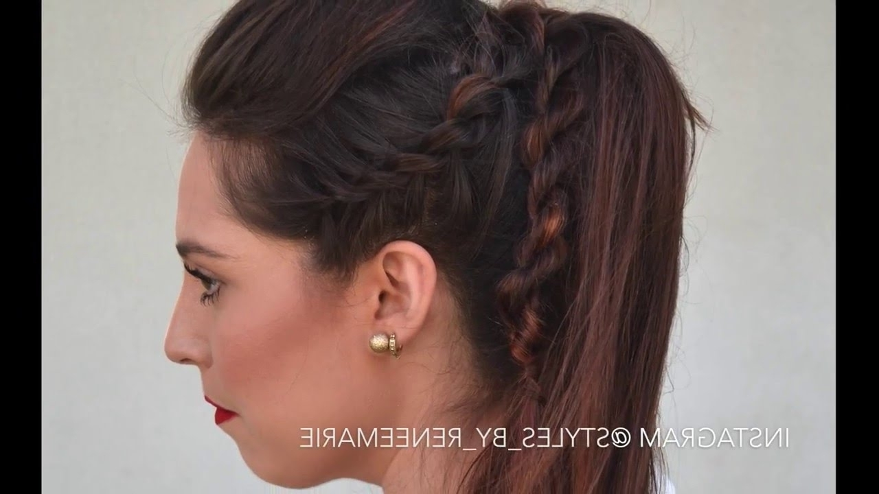 Latest Rockstar Fishtail Hairstyles With Regard To Double Strand Twist Rockstar Ponytail – Youtube (View 7 of 20)