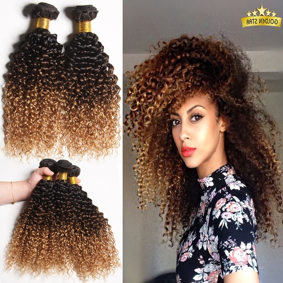 Mongolian Kinky Curly Hair Ombre Kinky Curly Hair Weave Curly Blonde Inside 2018 Brown To Blonde Ombre Curls Hairstyles (View 12 of 20)