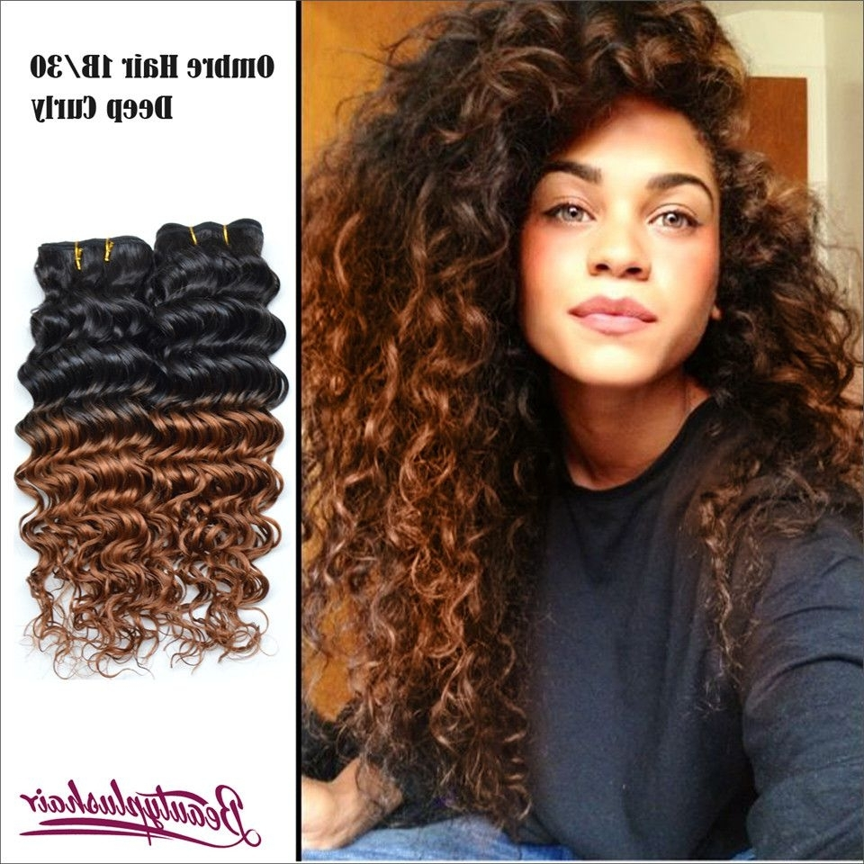 Most Popular Brown To Blonde Ombre Curls Hairstyles Throughout The Best Pcs Lot A Ombre Human Hair Extensions Malaysian Curly Pics (View 13 of 20)