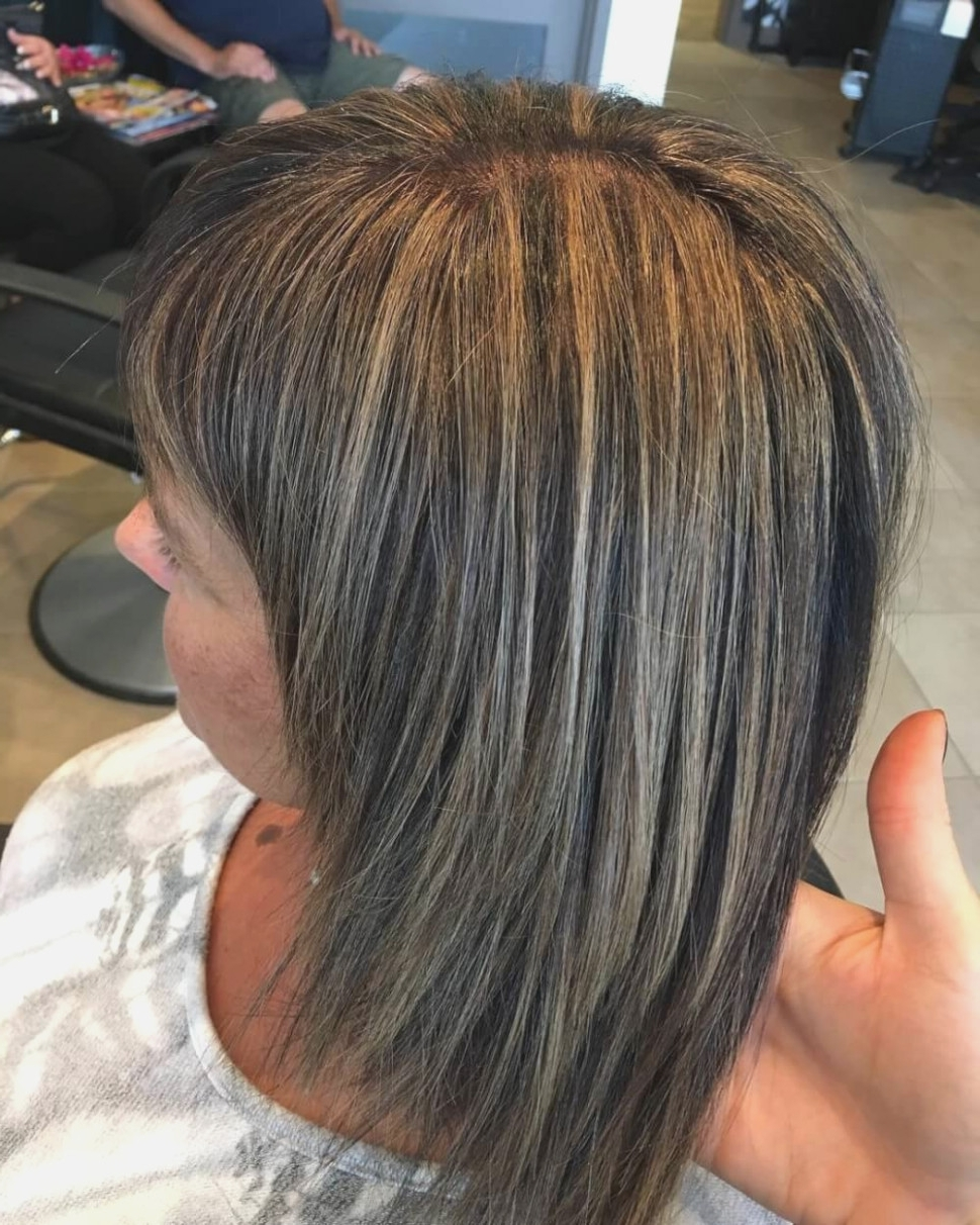 Most Popular Thin Platinum Highlights Blonde Hairstyles For Brown Hair With Blonde Highlights Straight (View 11 of 20)