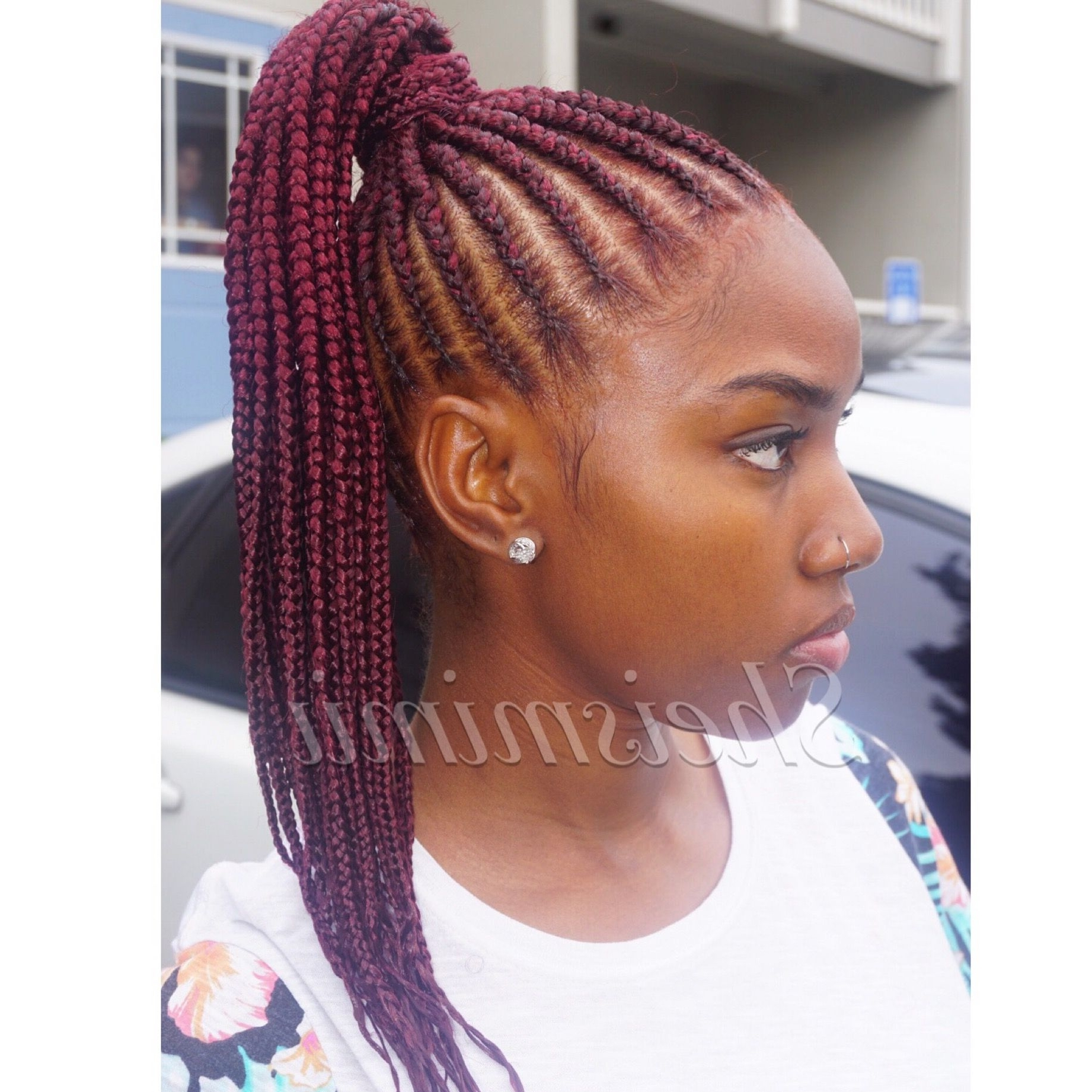 Most Recent Micro Braid Ponytail Hairstyles Regarding Stunningly Cute Ghana Braids Styles For 2018 Braided Ponytail In (View 14 of 20)