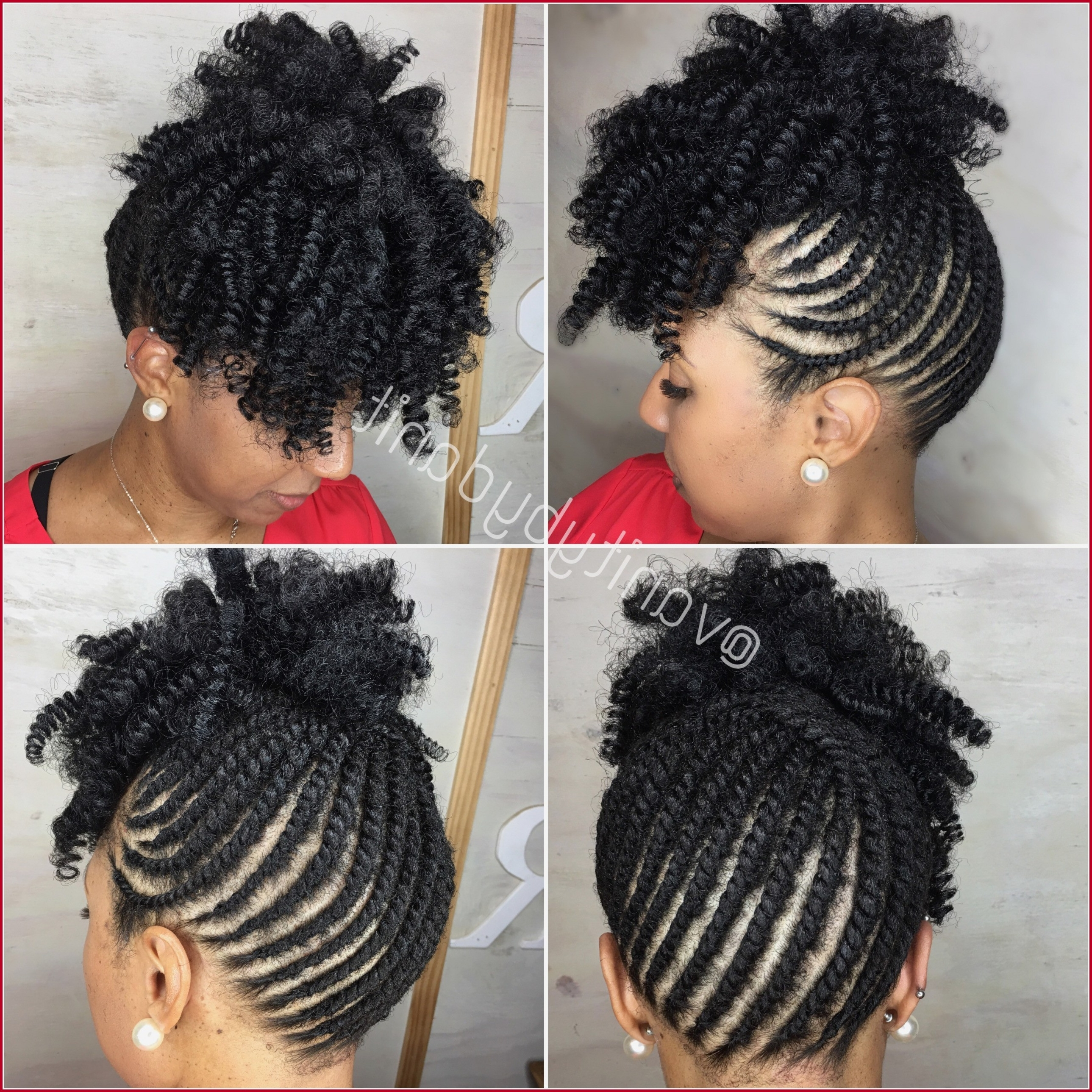 Most Up To Date Braided Hawk Hairstyles Throughout Hairstyles For Natural Hair 122793 Braid Hairstyles Top Braided (View 16 of 20)