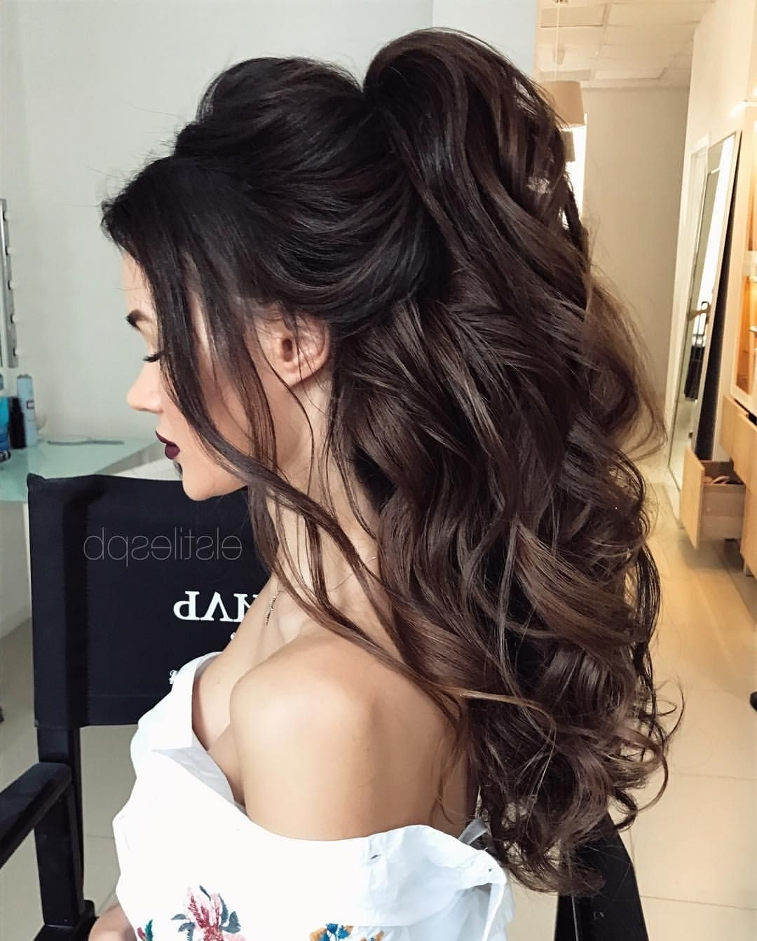 Featured Photo of Brunette Prom Ponytail Hairstyles