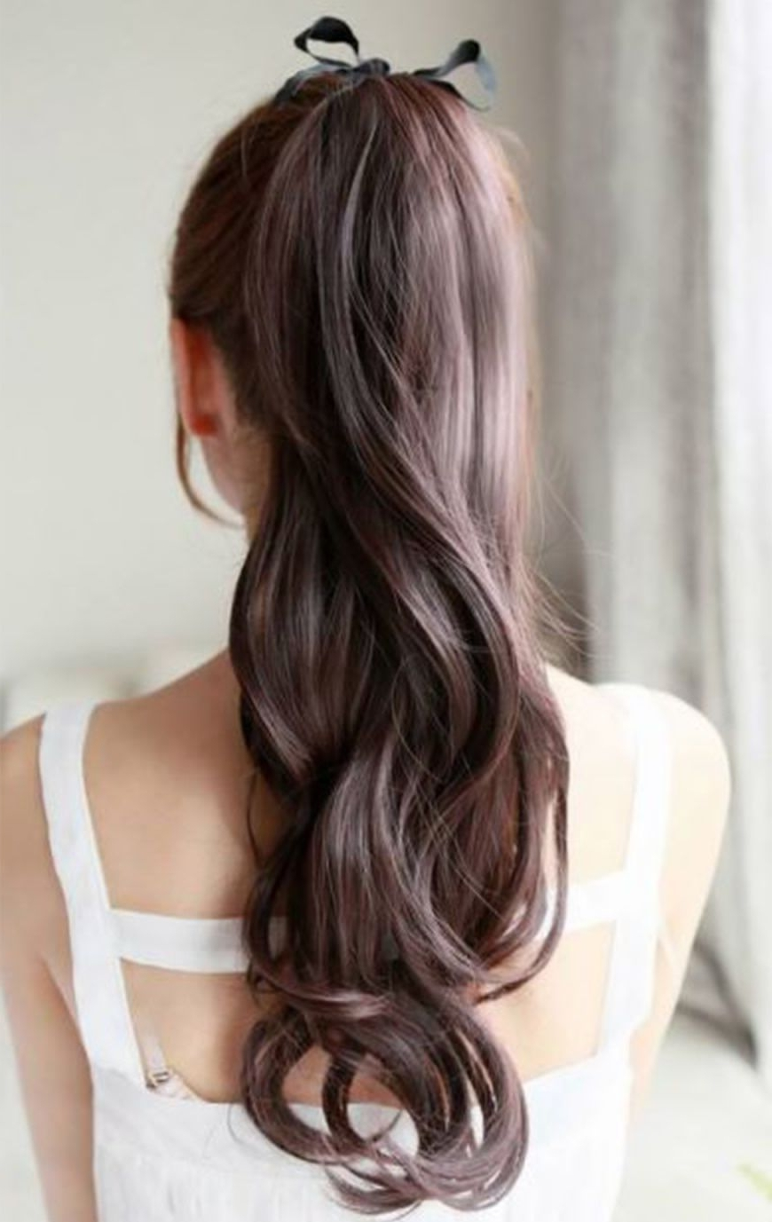 Pinterest Inside Trendy Long Brown Hairstyles With High Ponytail (View 14 of 20)