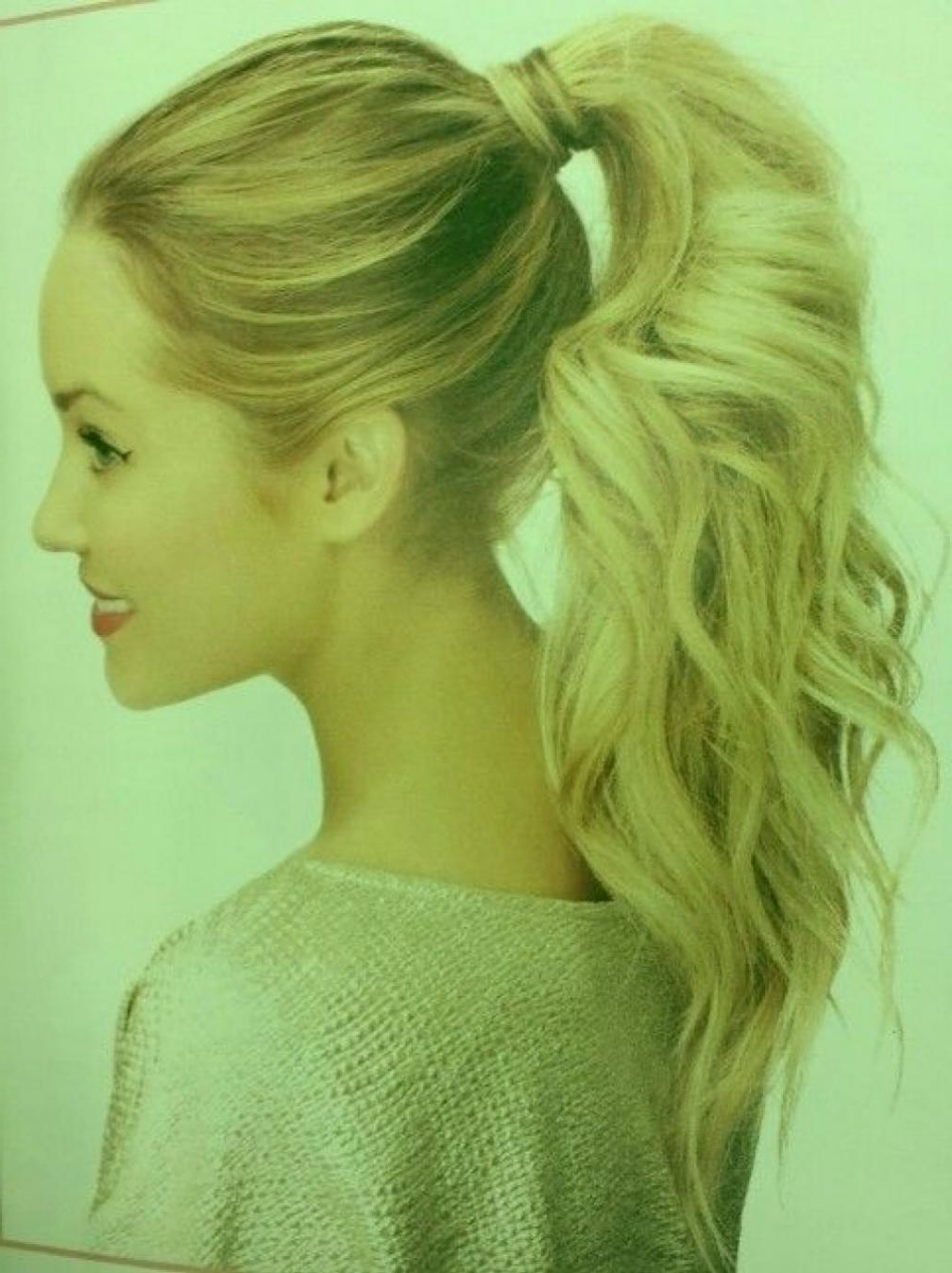 Prom Hairstyles For Long Hair With Braids And Side Pony Side Throughout 2017 Voluminous Pony Hairstyles For Wavy Hair (View 18 of 20)