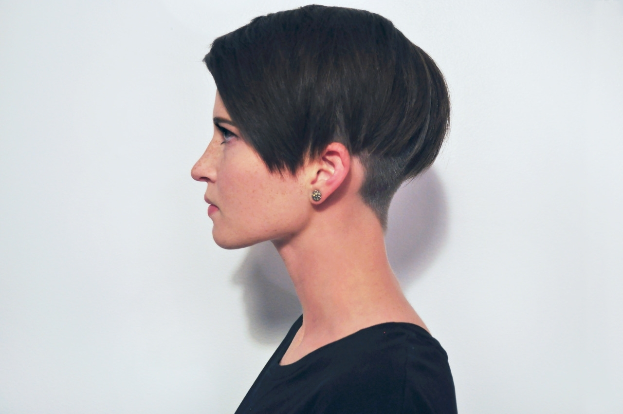 Straight Hair Short Cuts (View 15 of 20)