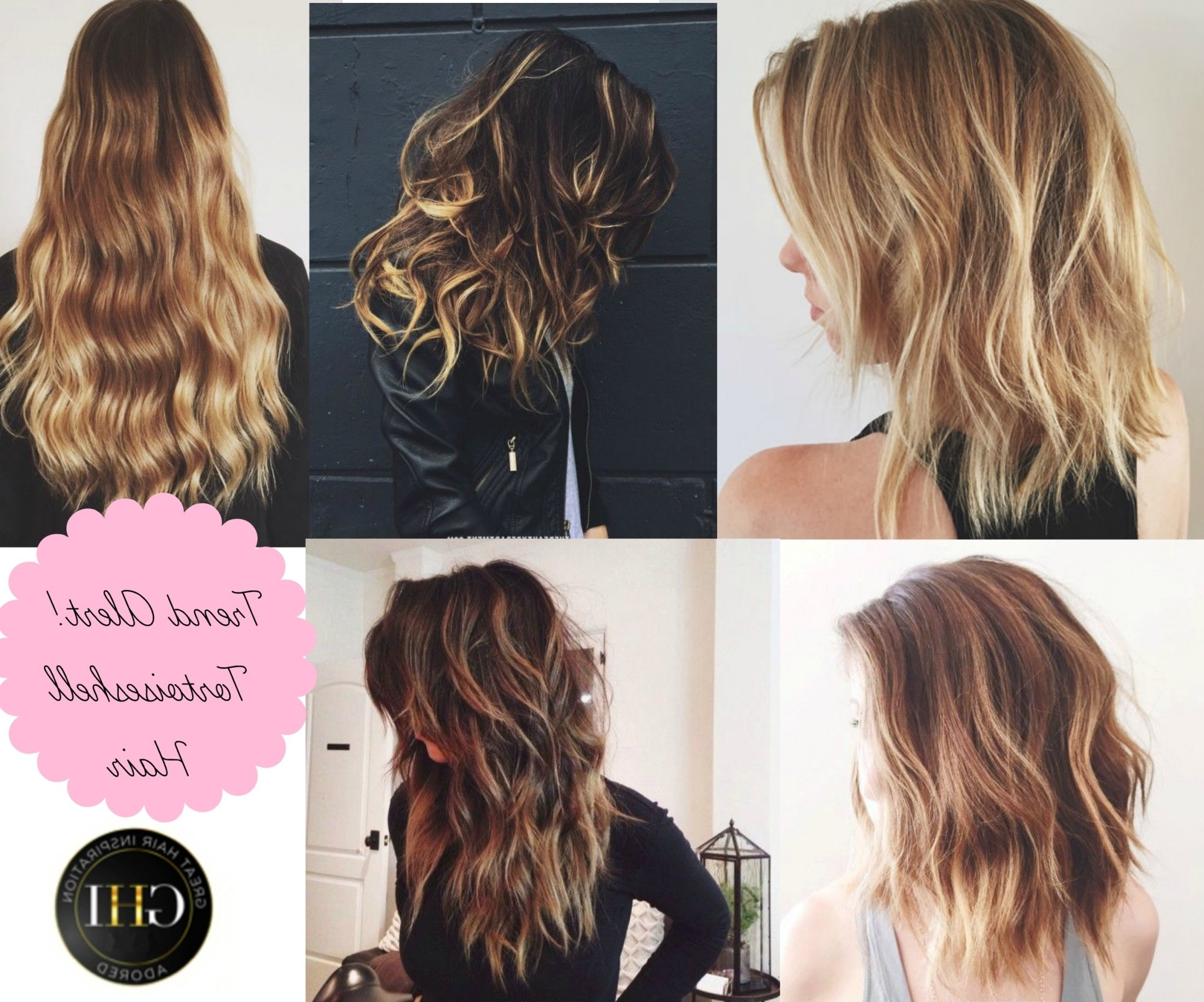 Trend Alert – Tortoiseshell Hair – Great Hair Inspiration Within Widely Used Tortoiseshell Straight Blonde Hairstyles (View 10 of 20)