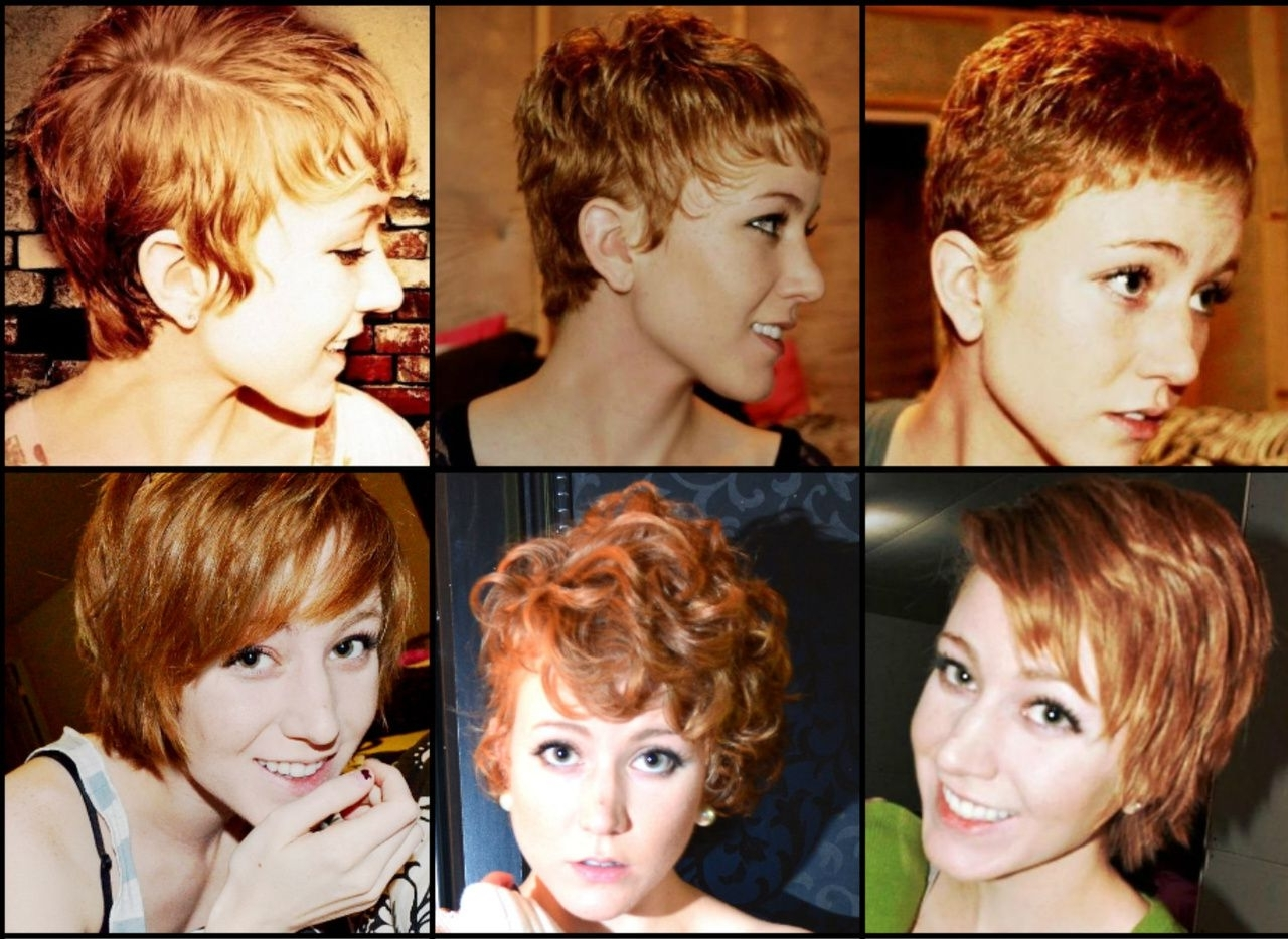 Featured Photo of Growing Out Pixie Hairstyles For Curly Hair