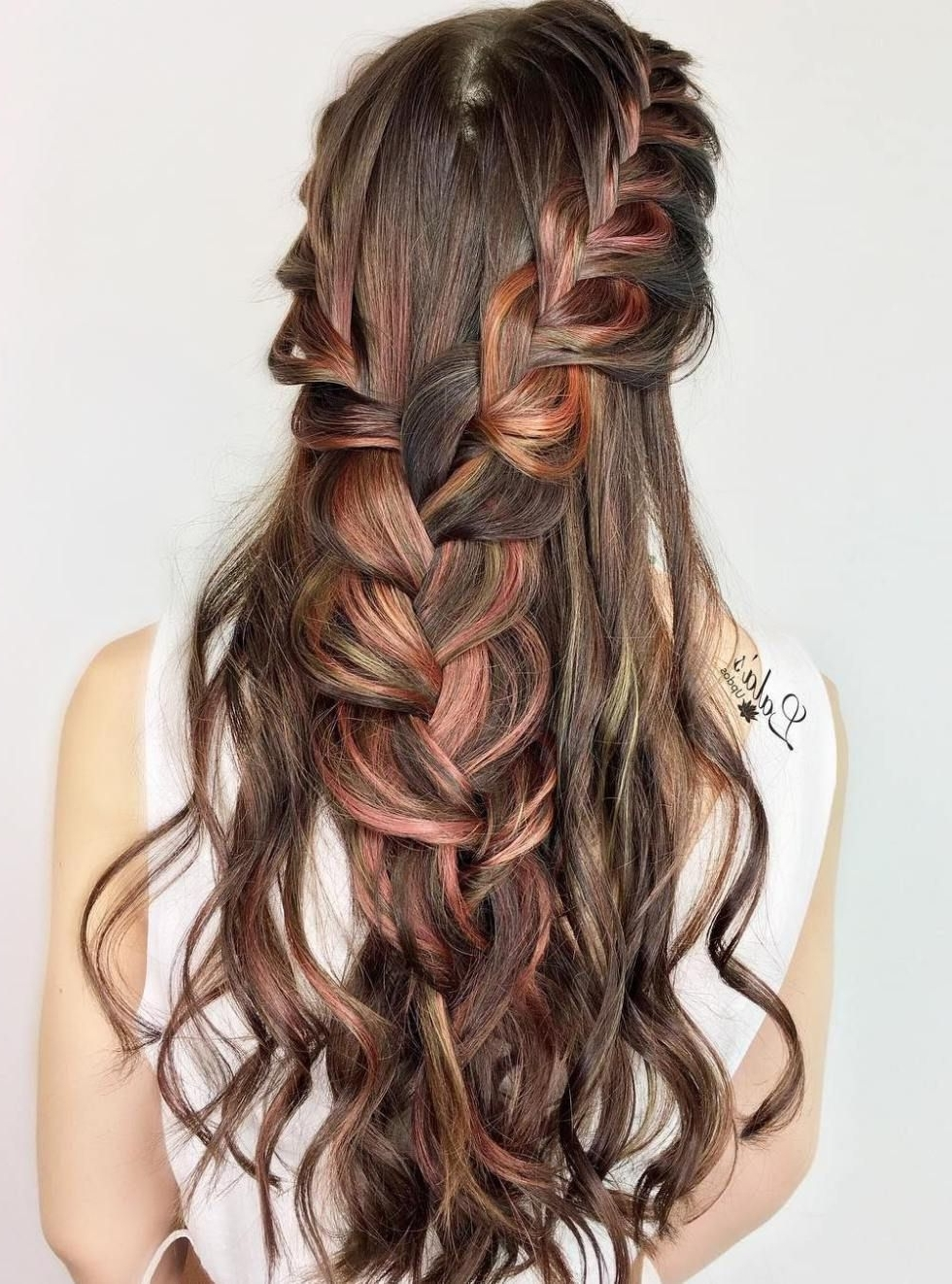 Two Braids Into One Half Up Hairstyle (View 18 of 20)