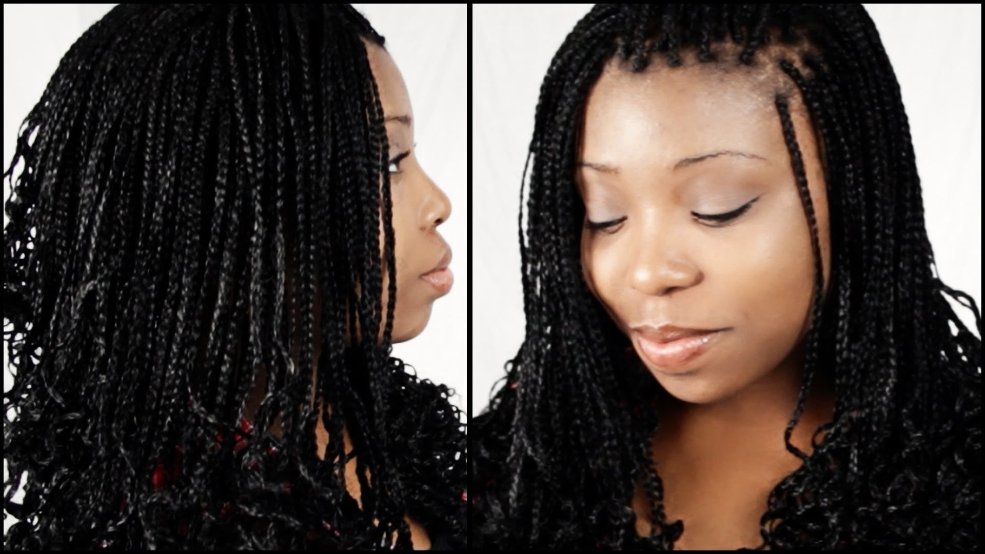 Well Known Entwining Braided Ponytail Hairstyles In Professional Hairstyles With Box Braids 2018 Gallery – Braid (View 17 of 20)