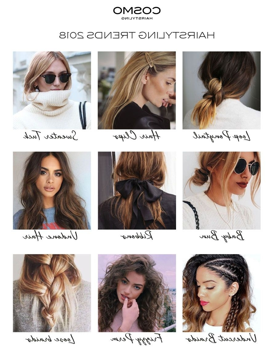 Well Known Loose And Looped Ponytail Hairstyles Inside These Are The Hairstyling Trends Of 2018! Loop Ponytail , Braids (View 11 of 20)