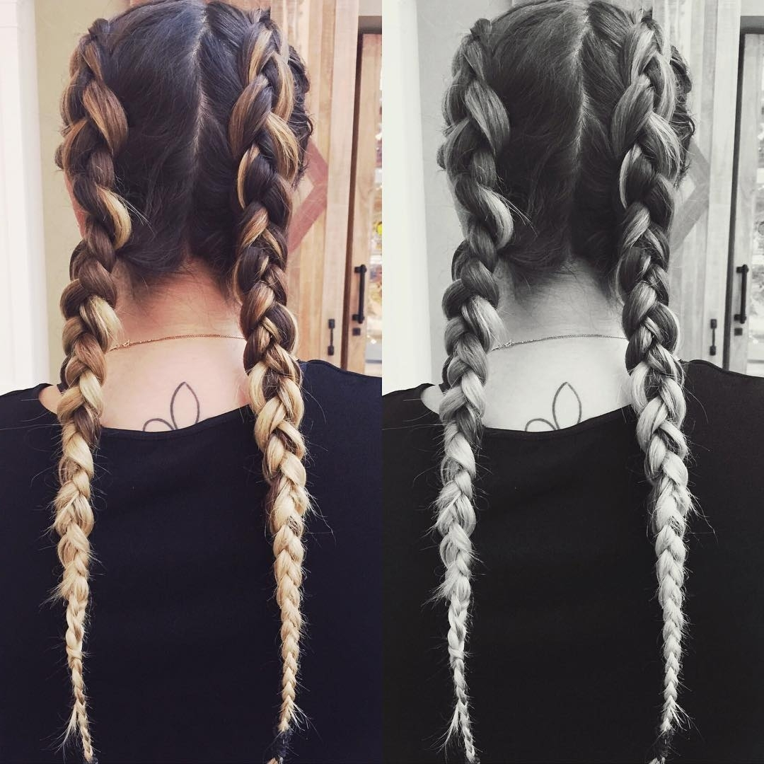 Well Liked Double Braided Hairstyles Within 20+ Two Braids Hairstyle Ideas, Designs (View 12 of 20)