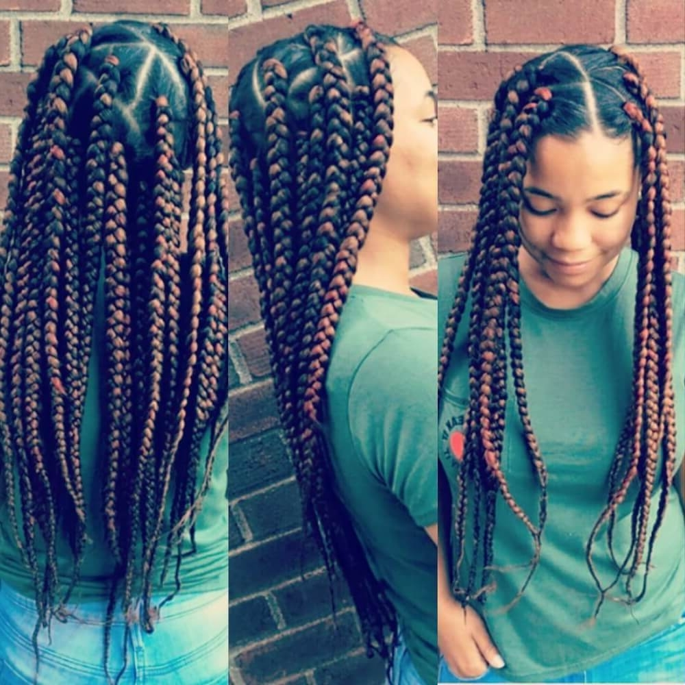 14 Natural Hairstyles For Black Women That Will Get You Noticed With Regard To Well Liked Beach Friendly Braided Ponytails (View 10 of 20)