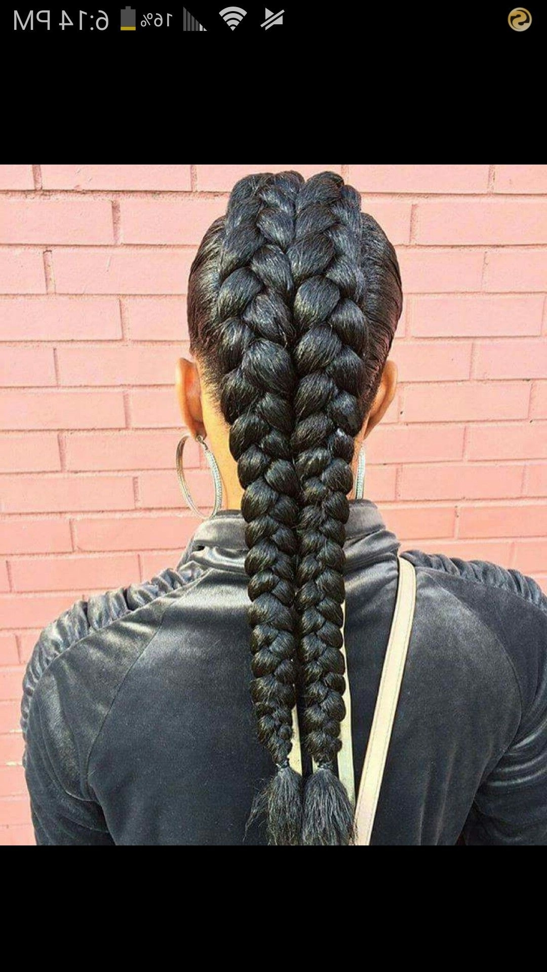 2018 Twin Braid Updo Ponytail Hairstyles In Double Braids Mohawk (View 7 of 20)