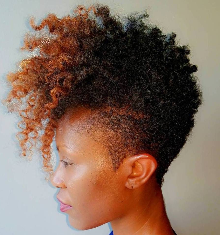 40 Cute Tapered Natural Hairstyles For Afro Hair In 2018 With Soft Curly Tapered Pixie Hairstyles (View 3 of 20)