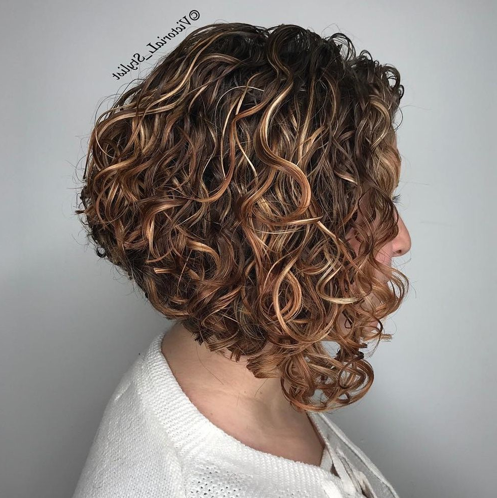 55 Different Versions Of Curly Bob Hairstyle In 2018 | Прически Inside Curly Angled Bob Hairstyles (View 8 of 20)