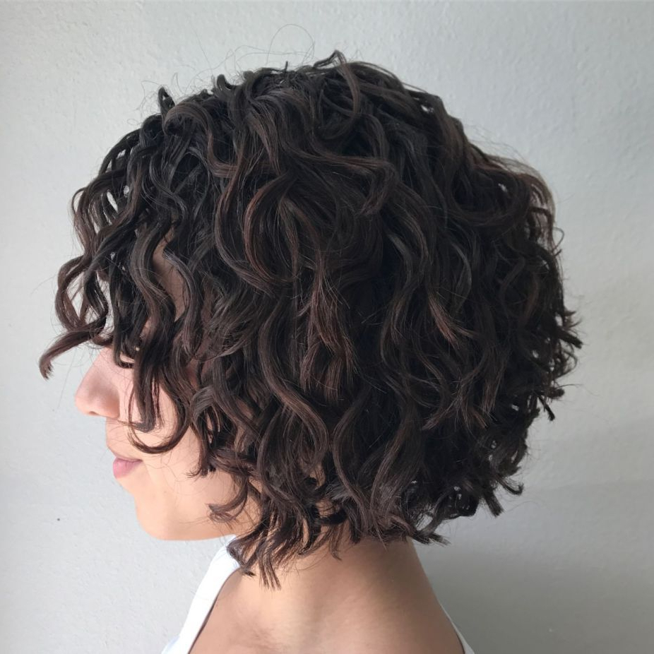 55 Different Versions Of Curly Bob Hairstyle In 2018 | Hair Inside Scrunched Curly Brunette Bob Hairstyles (View 13 of 20)