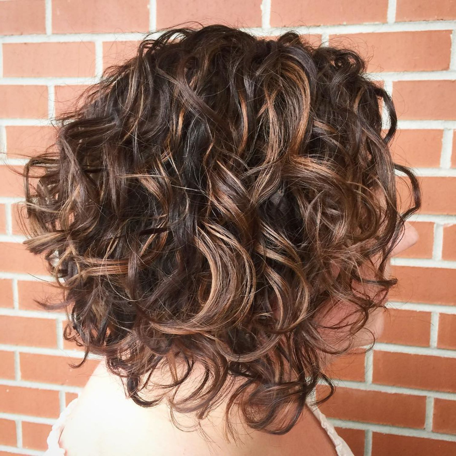 55 Different Versions Of Curly Bob Hairstyle In 2018 | Hair Pertaining To Scrunched Curly Brunette Bob Hairstyles (View 14 of 20)