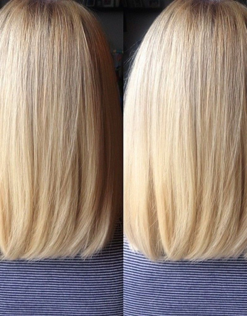 Back View Of Long Bob Haircut, Blunt Cut With Subtle Layers | Hair Inside Blunt Bob Haircuts With Layers (View 4 of 20)