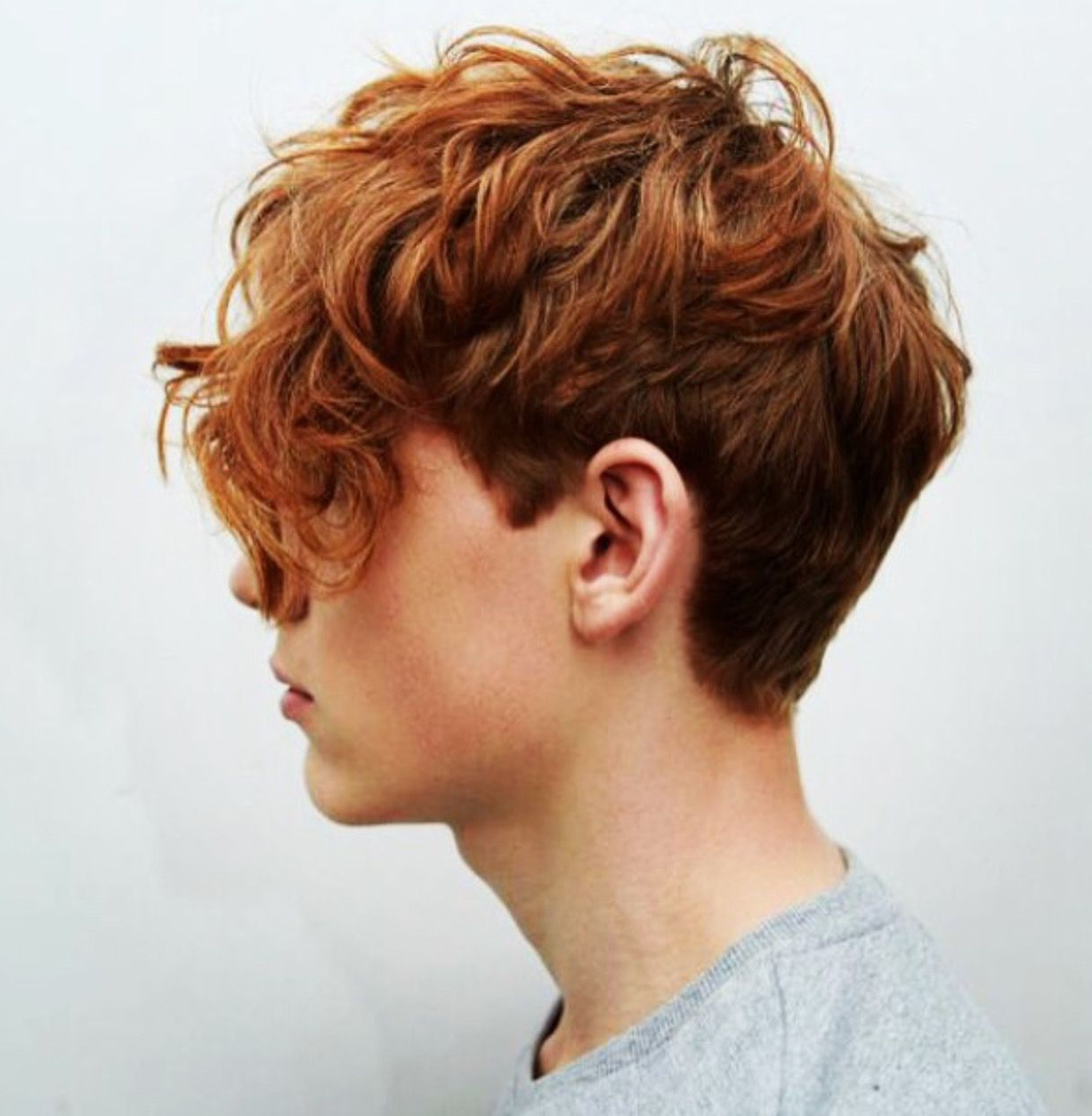 Beau Hair (Ginger) | Beau Churchill In 2018 | Pinterest | Hair Inside Tapered Brown Pixie Hairstyles With Ginger Curls (View 13 of 20)