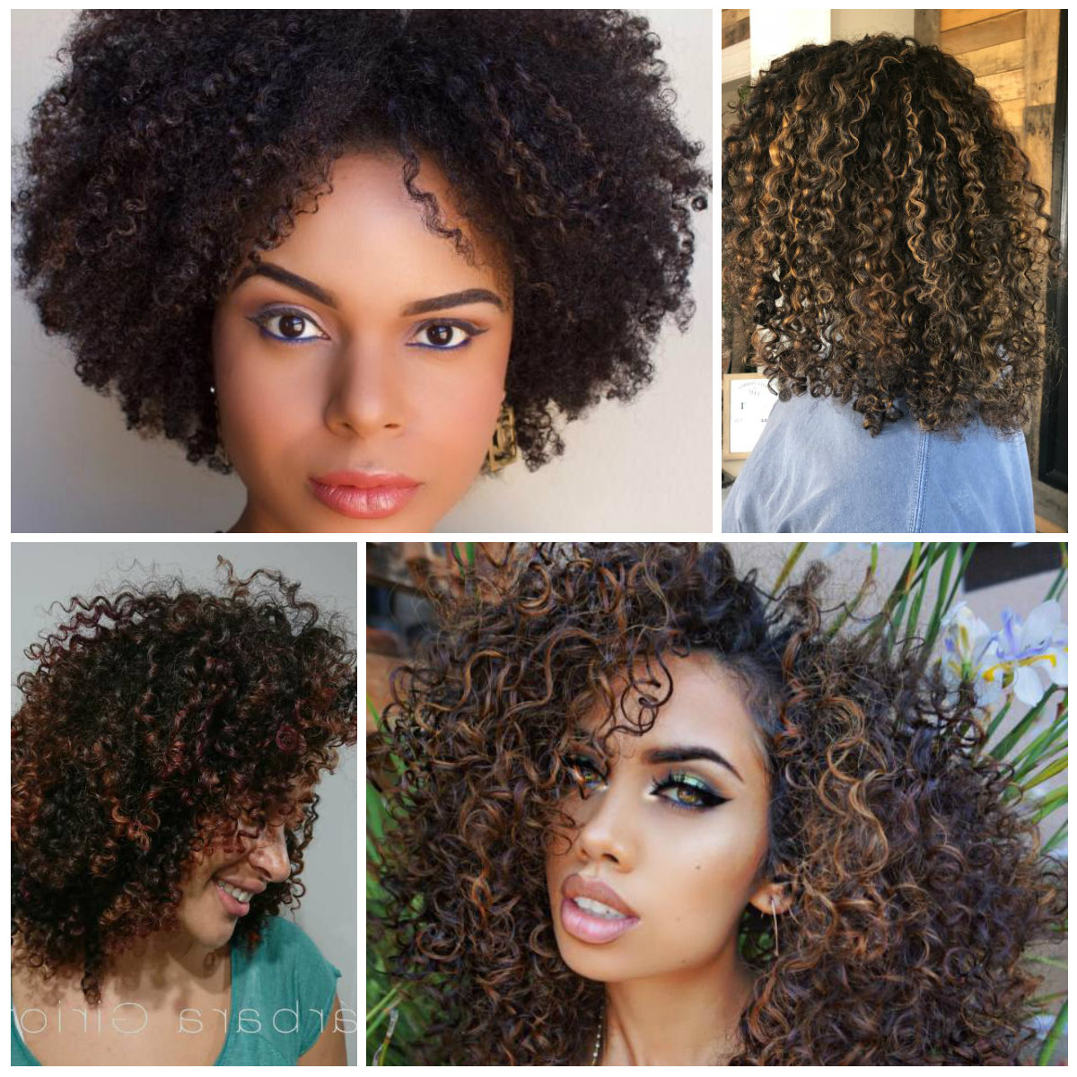 Caramel – Best Hair Color Ideas & Trends In 2017 / 2018 In Brown Curly Hairstyles With Highlights (View 4 of 20)