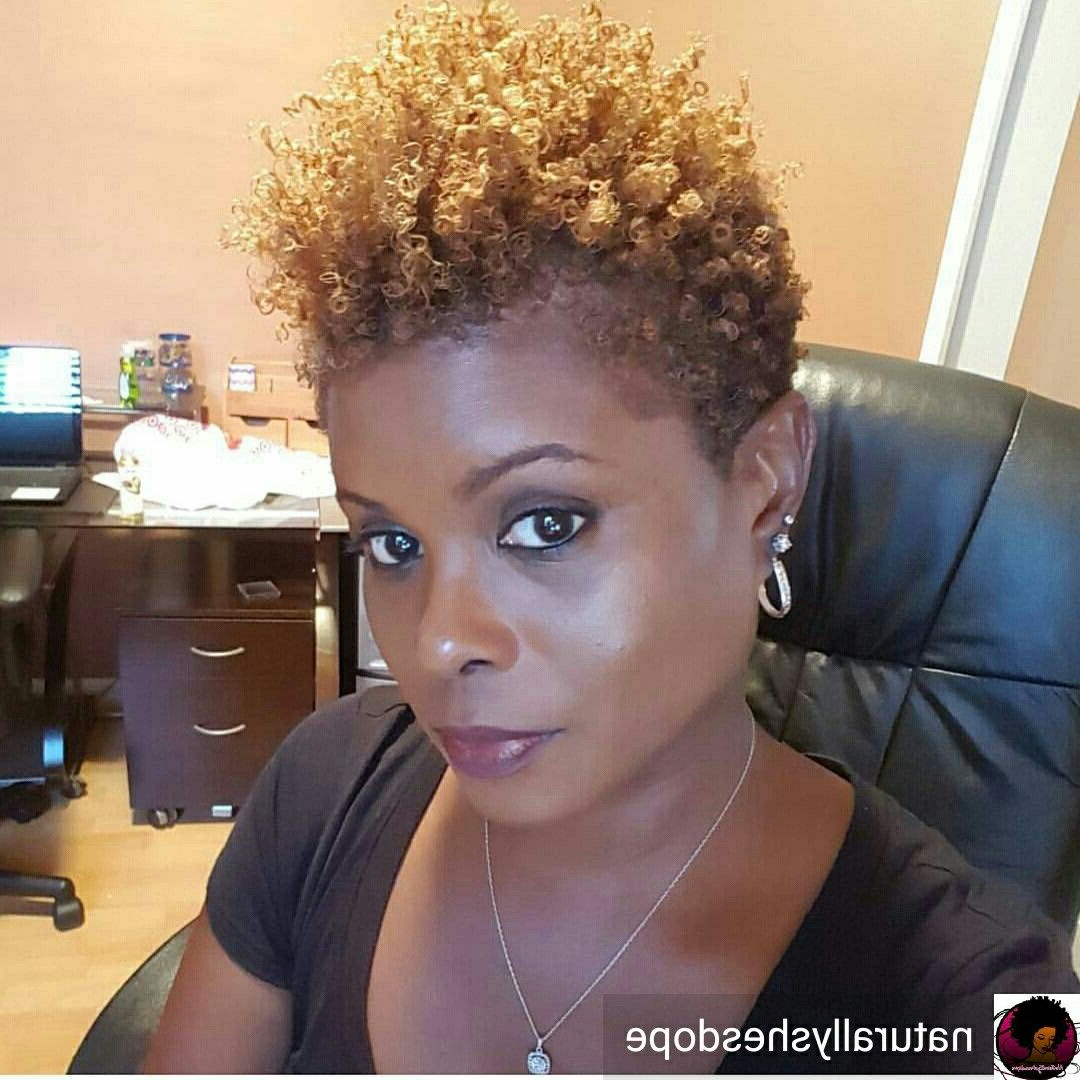 Dope Tapered Frostepthebarber S Blackhairinformation | Natural Regarding Tapered Brown Pixie Hairstyles With Ginger Curls (Gallery 10 of 20)