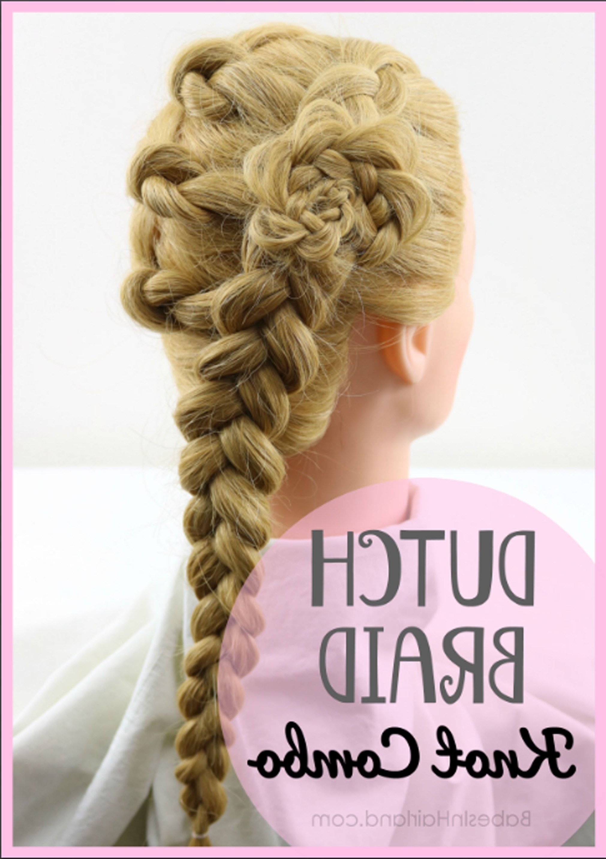 Dutch Braid Knot Combo Hairstyle (Gallery 10 of 20)