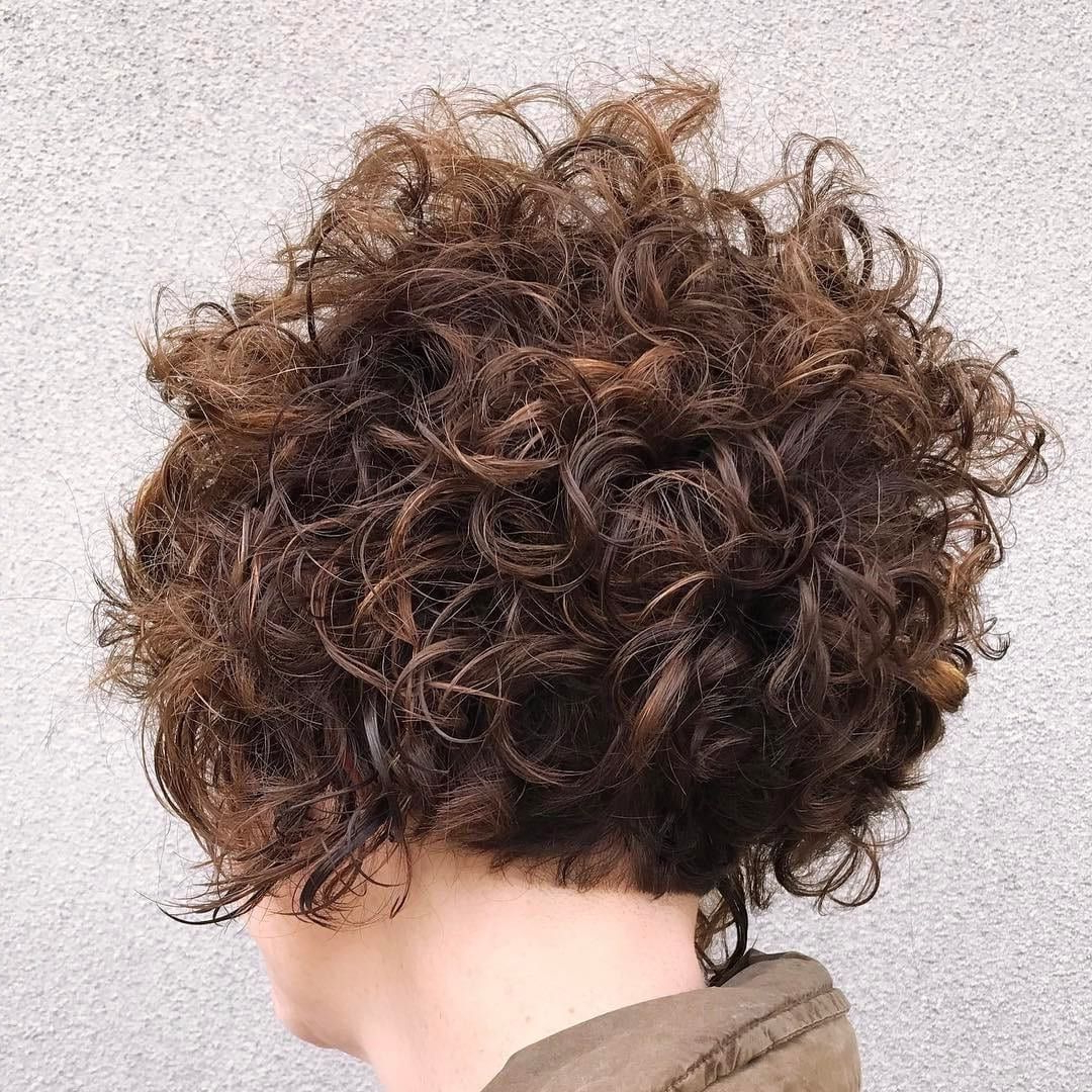 Get This Hairstyle:http://hairstyleology/stacked Curly Bob For Stacked Curly Bob Hairstyles (View 8 of 20)