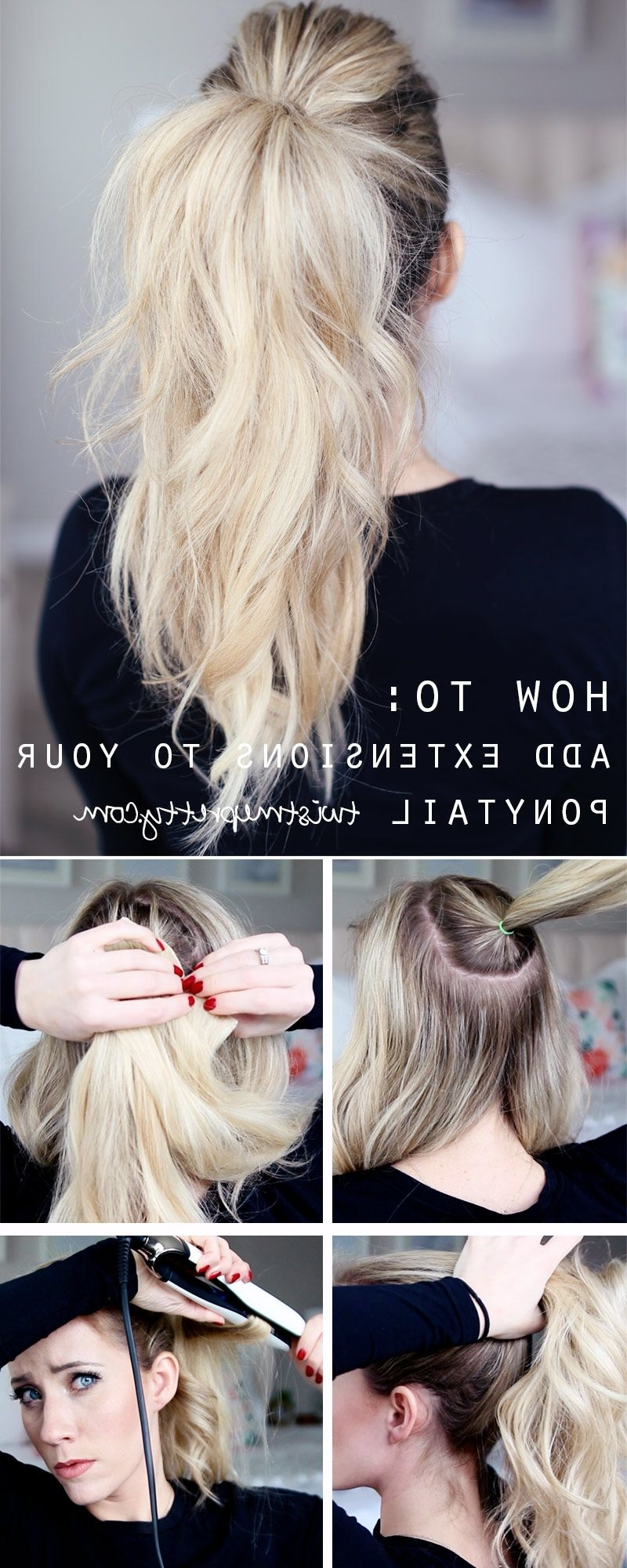 // Hairstyles + Braids Regarding Well Known Twisted And Pinned Blonde Ponytails (View 17 of 20)