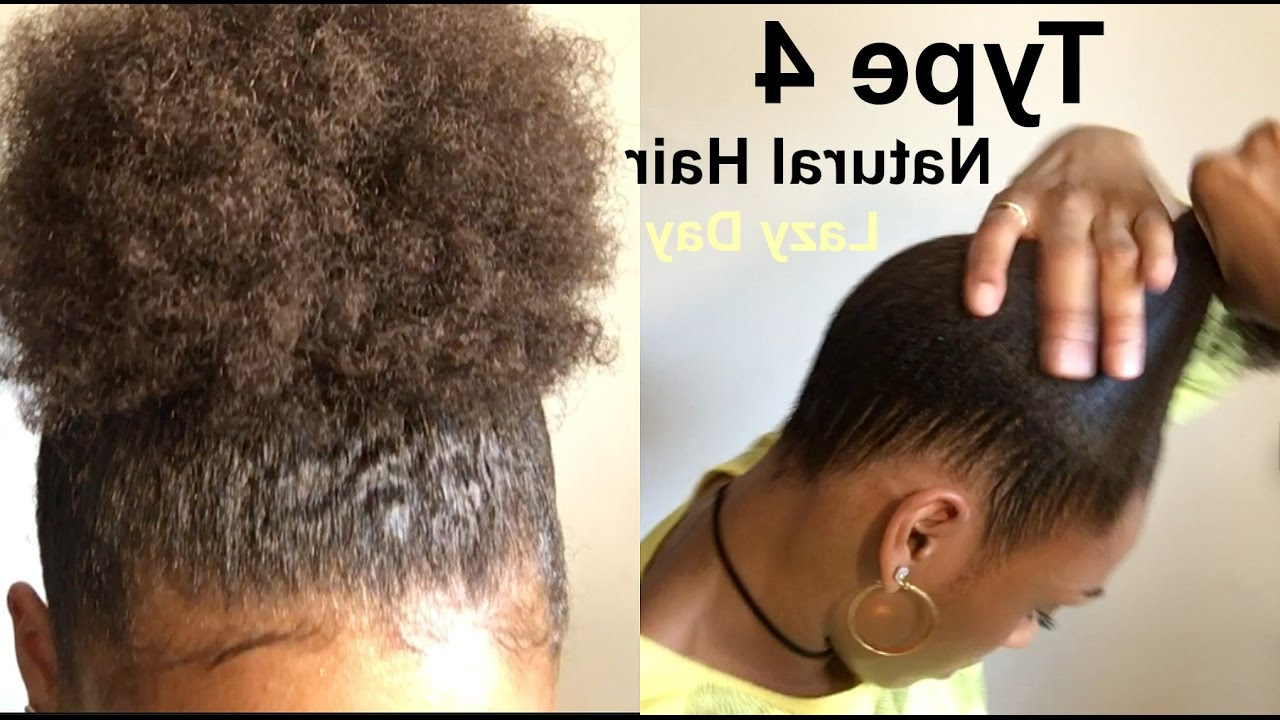 Lazy Hairstyle For Thick, Kinky Curly Natural Hair | How To: Sleek With Regard To Pretty And Sleek Hairstyles For Thick Hair (View 16 of 20)