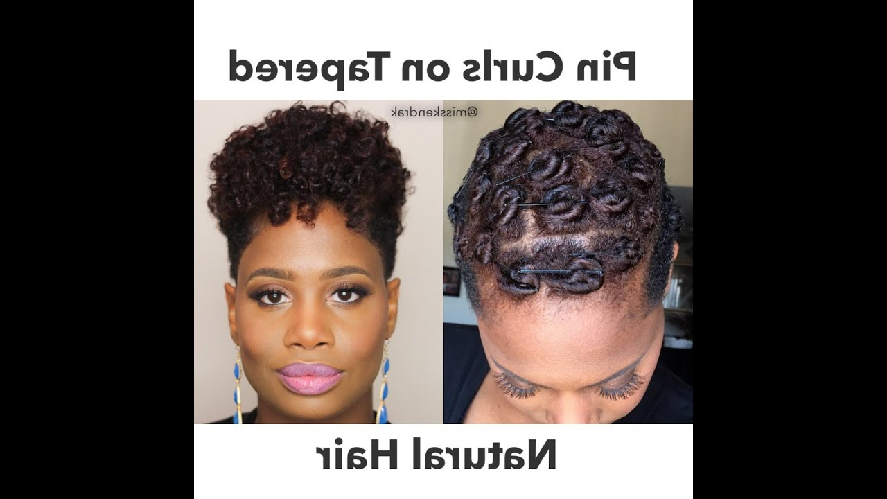 Pin Curls On Tapered Natural Hair | 2 Methods – Youtube In Curly Black Tapered Pixie Hairstyles (View 16 of 20)