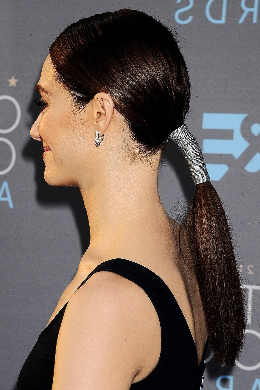 Ponytail Hairstyles 2018: Hair Up Ideas (View 18 of 20)