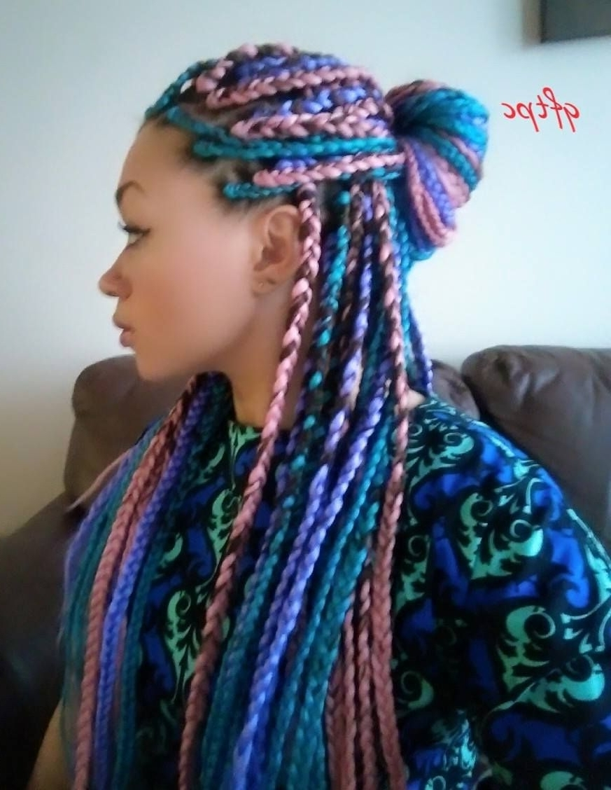 Preferred Multicolored Jumbo Braid Ponytail Hairstyles Intended For I Tried It: Multi‐Colored Box Braids (View 14 of 20)