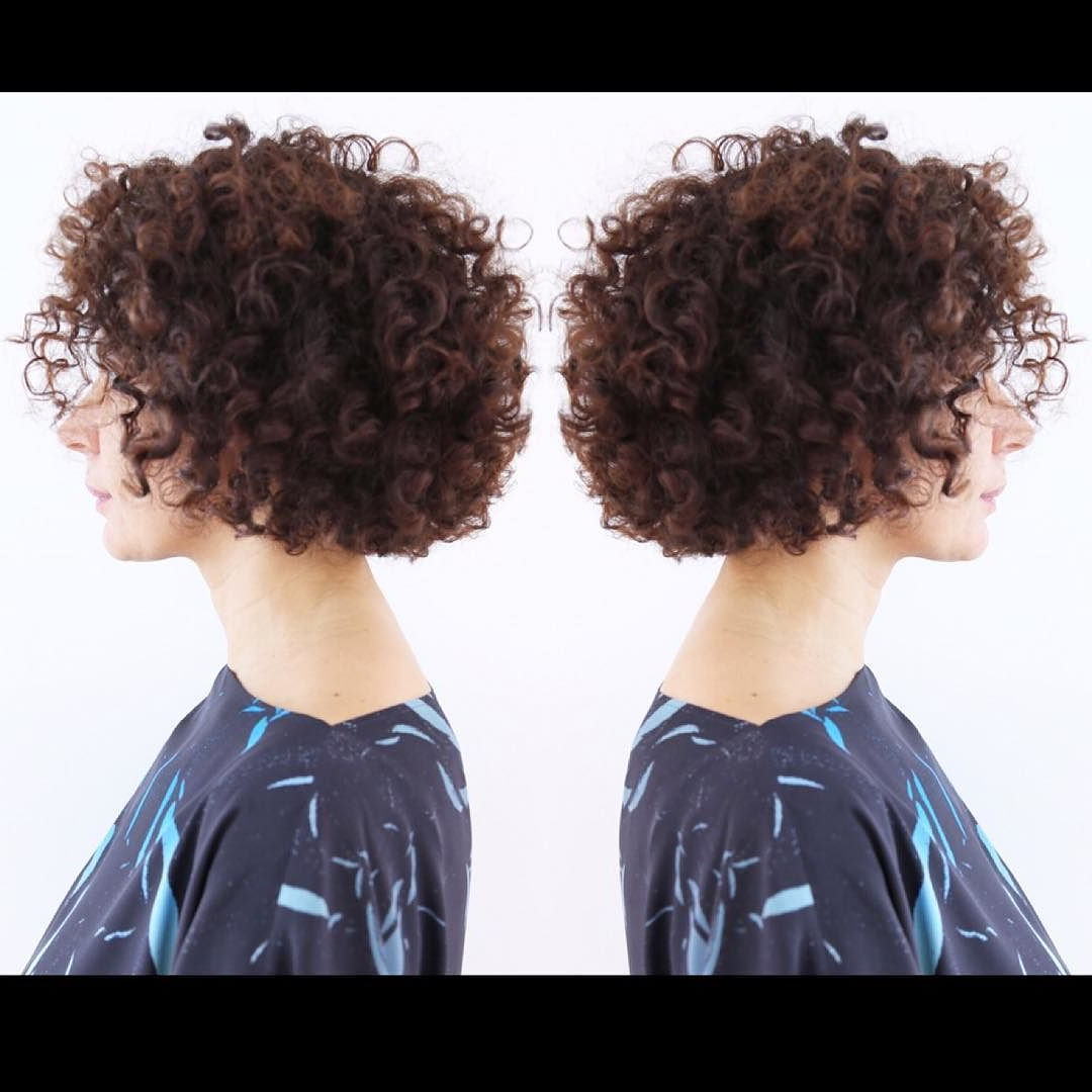 Protect Your C U R L Y – Q With #dualstylersliss From #lorealpro Inside Curly Q Haircuts (View 5 of 20)
