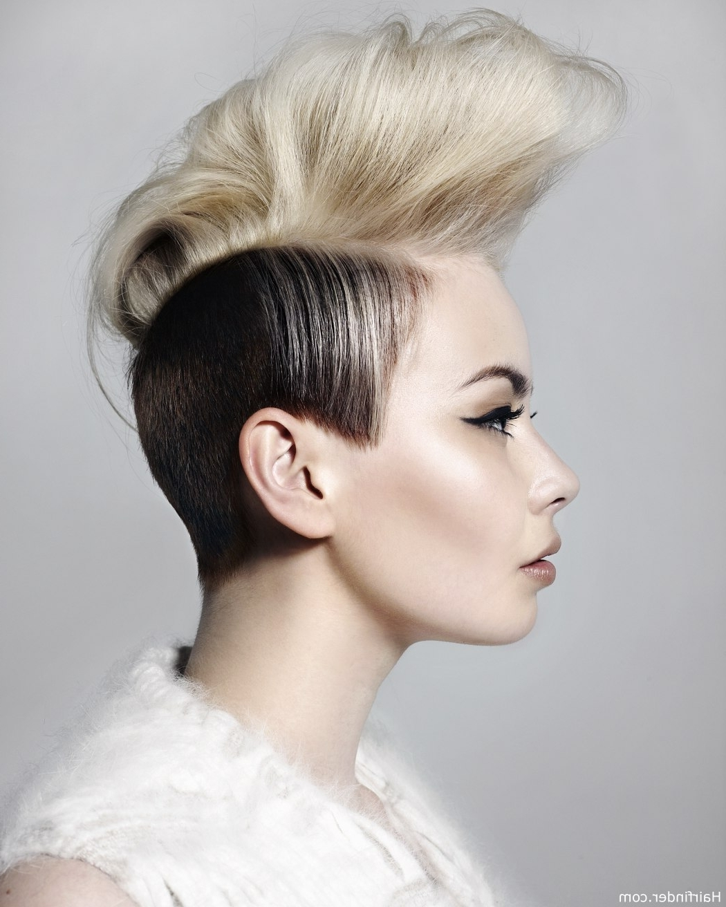 Punk Style For Widely Used Sculptural Punky Ponytail Hairstyles (View 16 of 20)