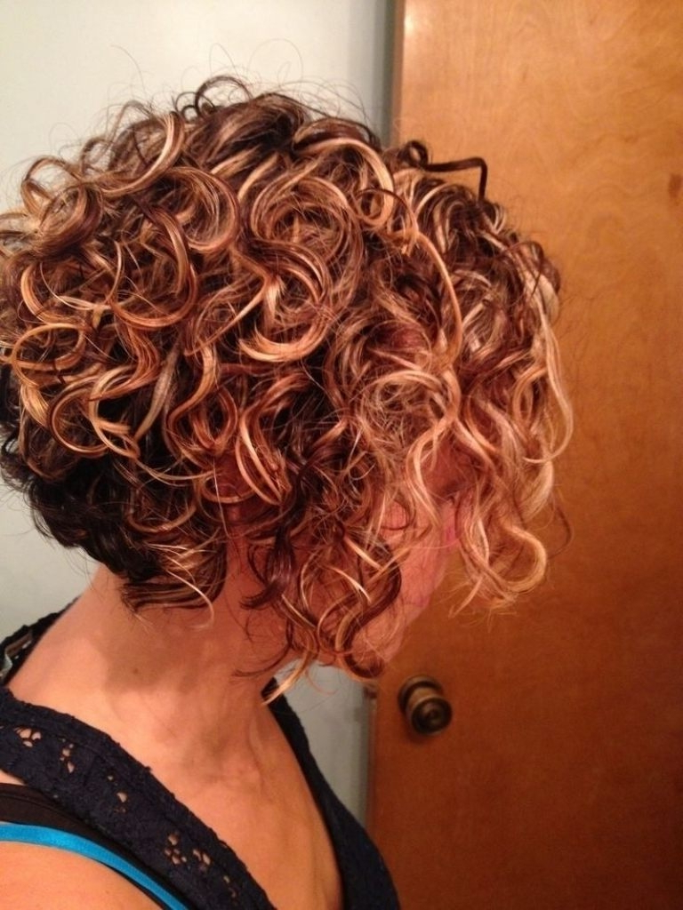 Short Curly Hairstyles Stacked Best 25 Curly Bob Hairstyles Ideas Throughout Stacked Curly Bob Hairstyles (View 13 of 20)