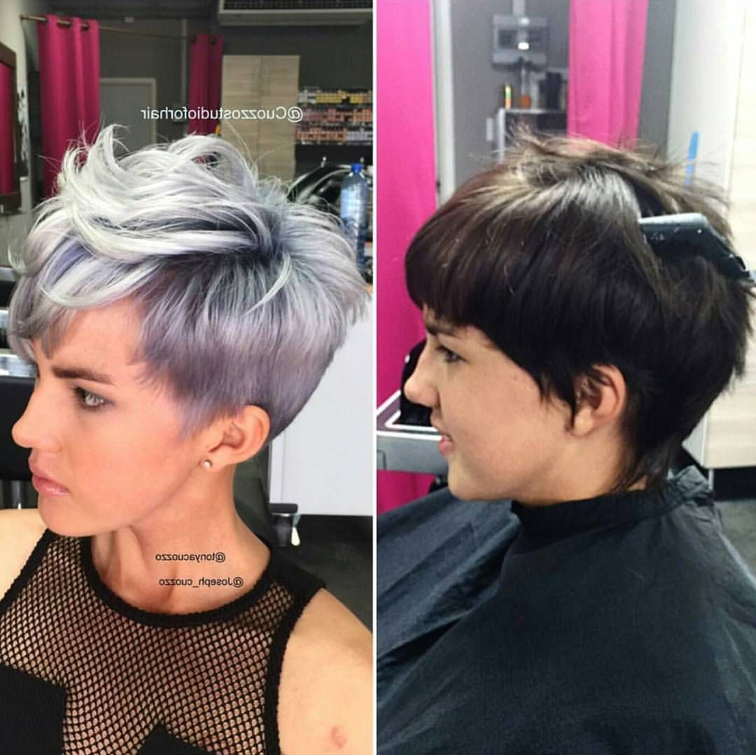 Silver Pixie Cut Before After Short Hair | Edgy Short Hair Inside Edgy Purple Tinted Pixie Haircuts (View 20 of 20)