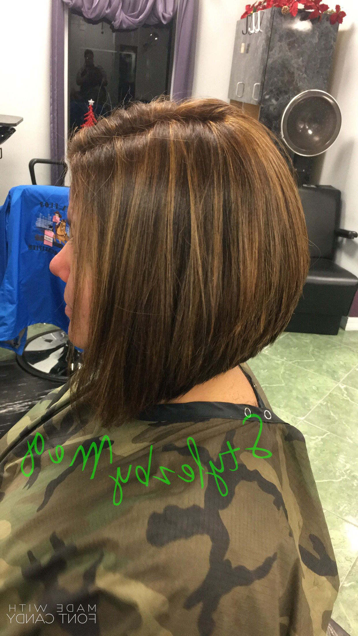Swing/inverted Bob With Paul Mitchell Color And Caramel Highlights In Stacked Bob Hairstyles With Highlights (View 15 of 20)
